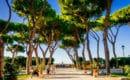 Oragne Garden in Rome
