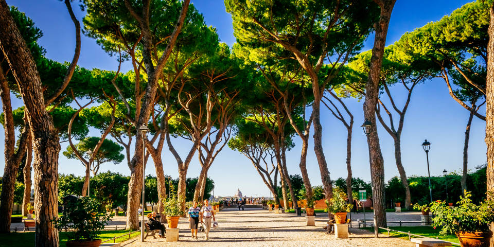 Garden of Oranges in Rome