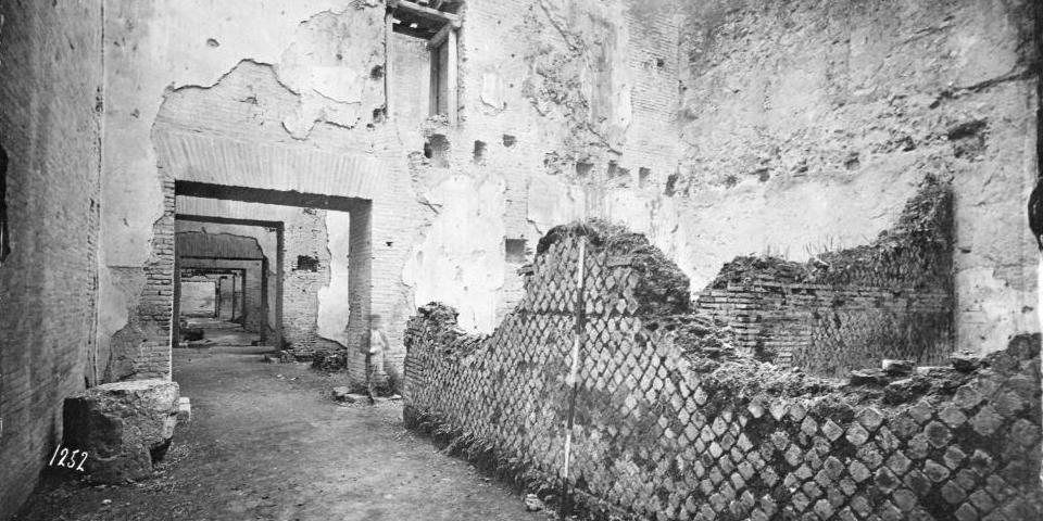 history - oppian hill